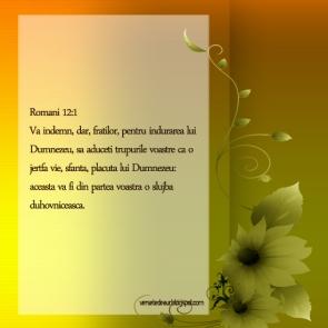 versete-felicitari-4